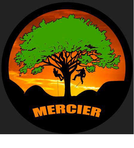 Arboristes Grimpeurs à Genève et Suisse romandeMercier